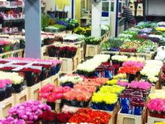 marché rungis