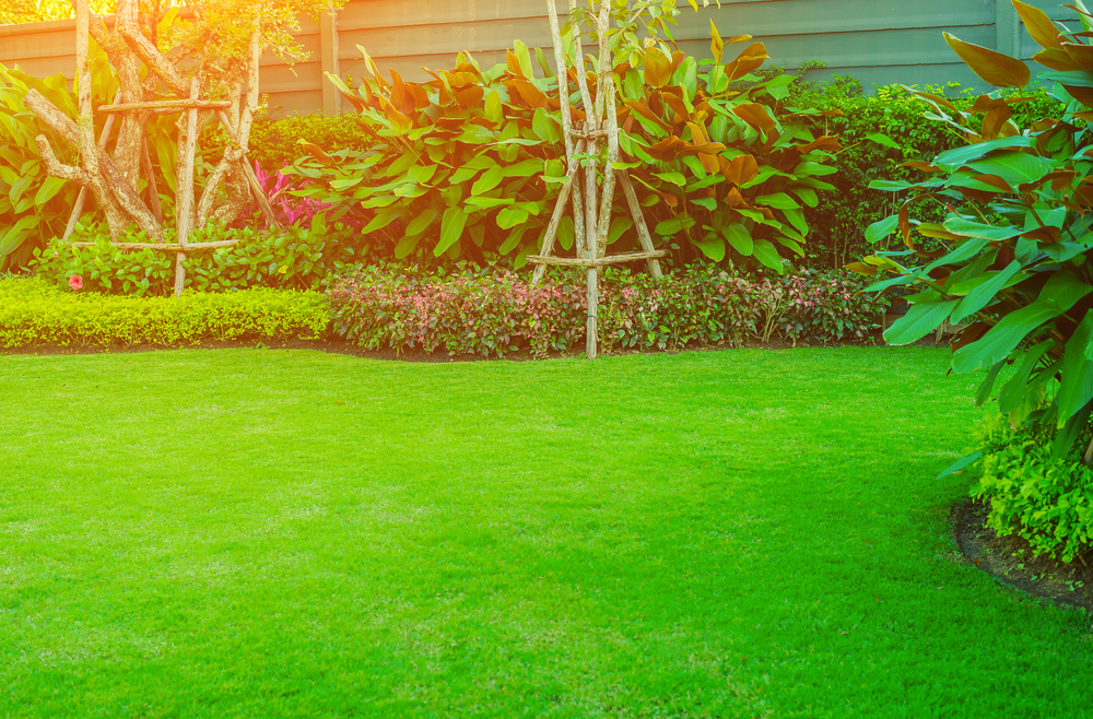 preparer jardin vacances